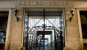 la cour Gozsdu