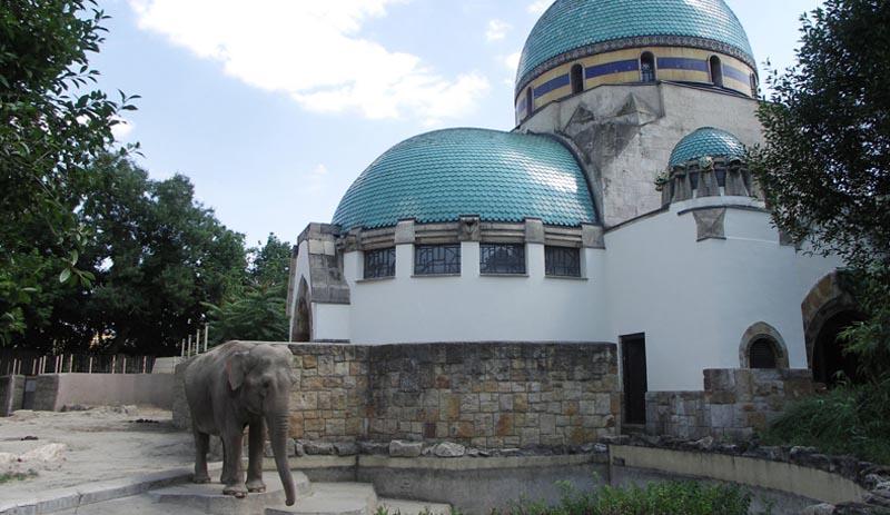 maison des éléphants
