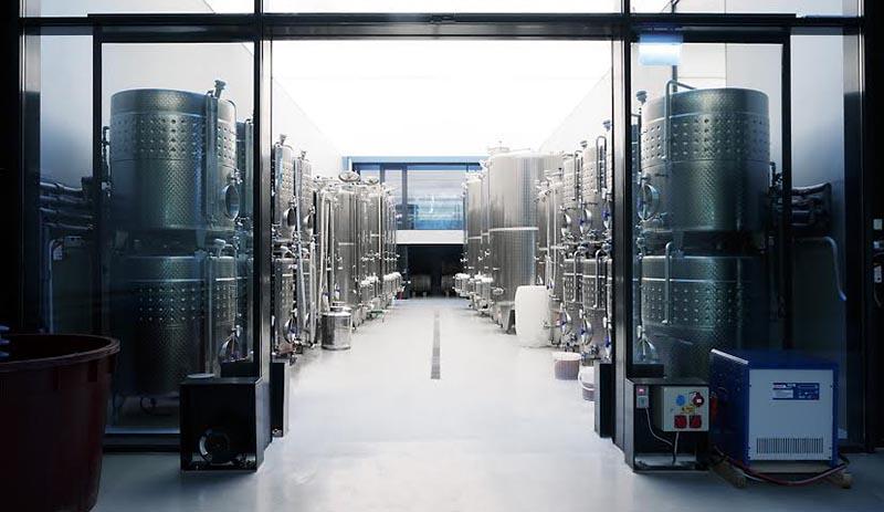élaboration du vin