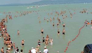 Balaton traversée à la nage