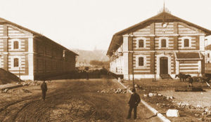 entrepôts de blé au début du 20ème siècle