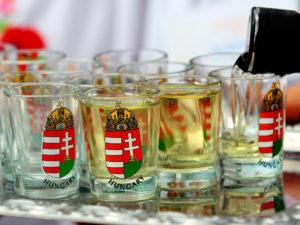 L'eau de vie le Pálinka