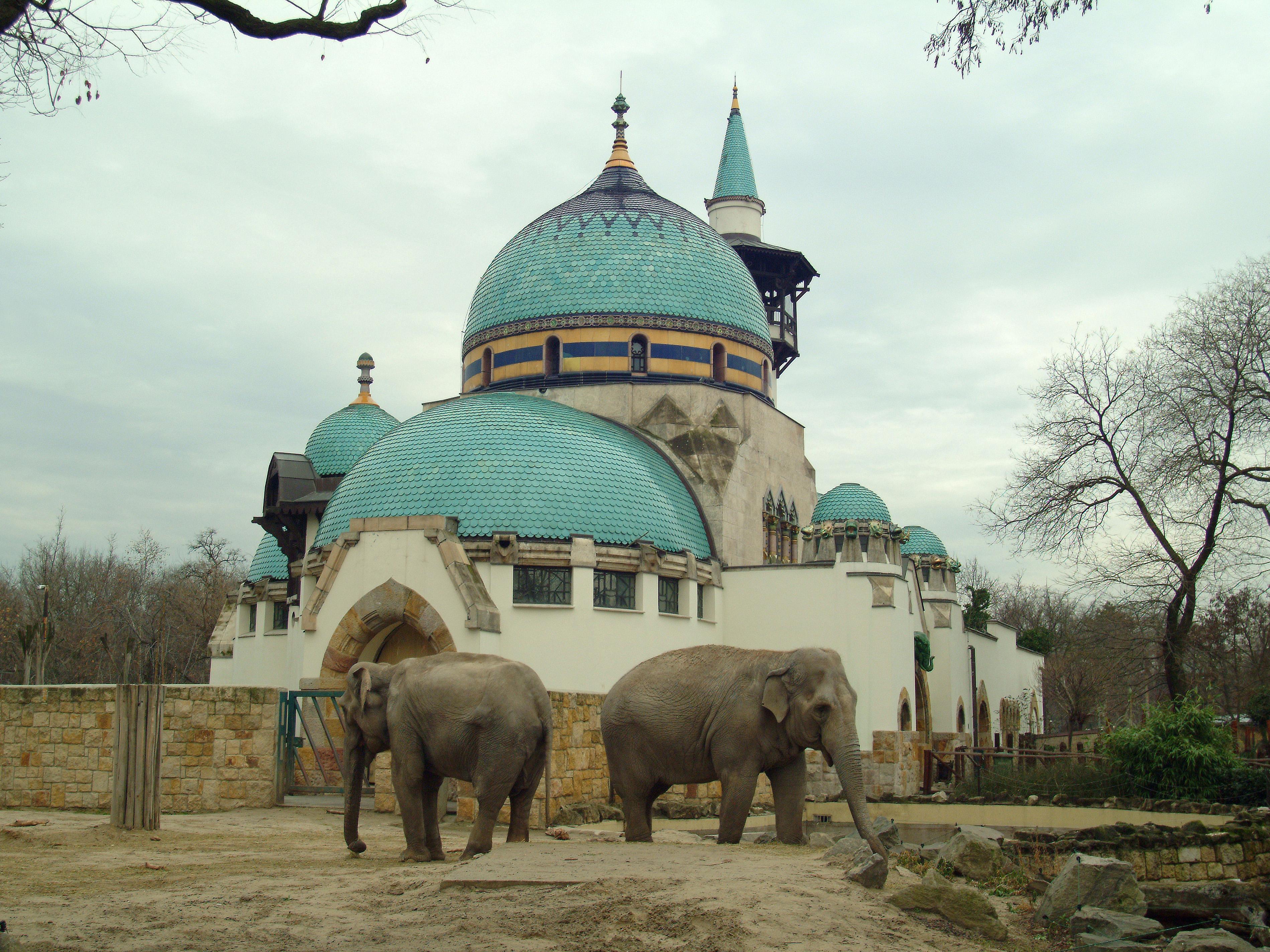 la maison des éléphants